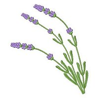 Lavender embroidery design 5A.jpg