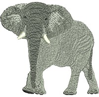 Embroidery design of the African elephant (Loxodonta africana)