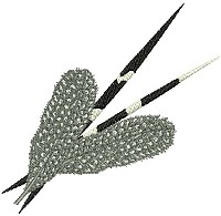 Embroidery design of two porcupine quills and two guinea fowls feathers together.