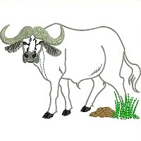 Cape Buffalo embroidery design