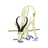 Springbok embroidery design