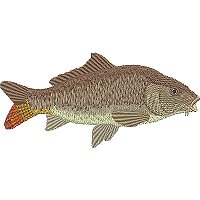 Image of petcarp1200.jpg